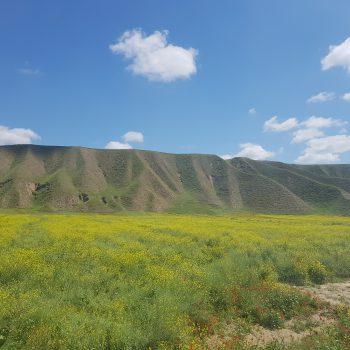 تور عکاسی ترکمن صحرا