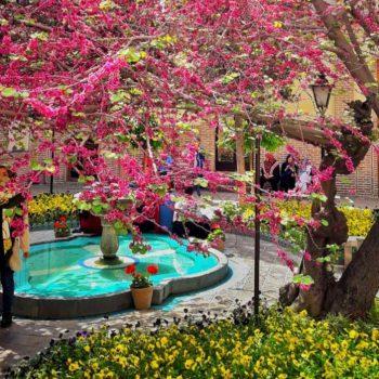 تور عکاسی شهر تهران