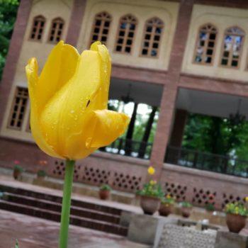 ورکشاپ عکاسی باغ ایرانی